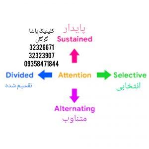 انواع توجه_کلینیک یاشا_گرگان09358471844